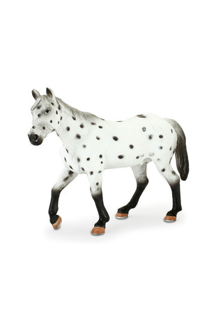 Appaloosa Stallion (Extra Large)