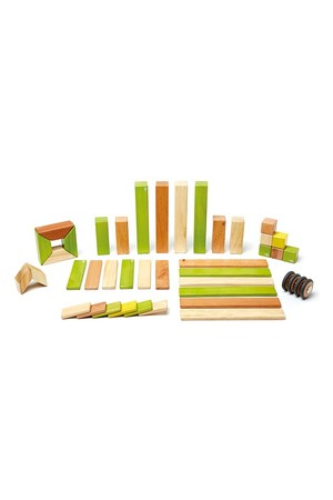 Magnetic Wooden Blocks - Jungle (42 Pieces)