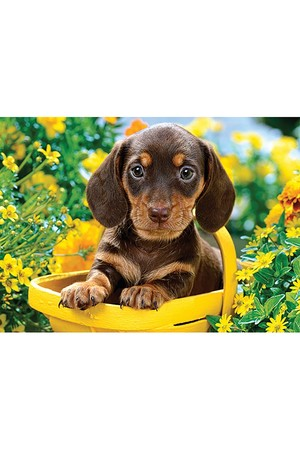 180 Piece Puzzle - Puppy in Yellow