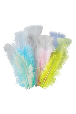 Feathers - Pastel (10g)