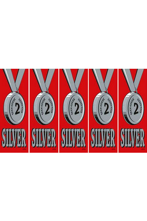 Vinyl Medal Ribbons - Silver 2: Pack of 20