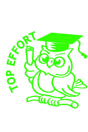 Top Effort Owl Merit Stamp