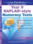 Excel - Year 9 - NAPLAN Style - Numeracy Tests
