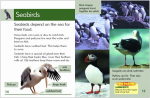 Go Facts Animals - Birds - Sample Page