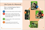 Go Facts Animals - Mammals - Sample Page