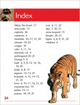 Go Facts Mammals - Big Cats - Sample Page