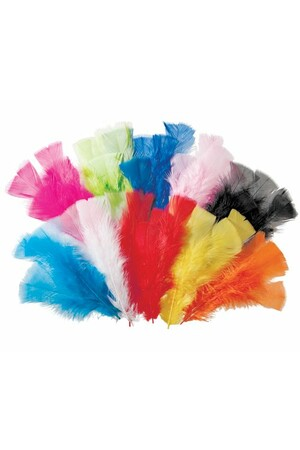 Feathers - Assorted Colours (60g)