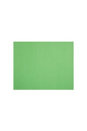 Quill Board 210gsm (510mm x 635mm): Pack 20 - Lime