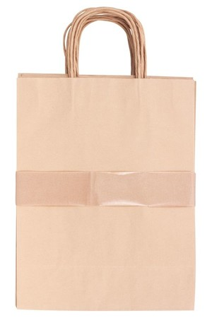 Paper Bags with Handle - Medium (Pack of 10)