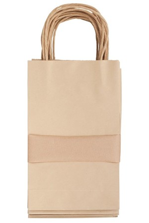 Paper Bags with Handle - Small (Pack of 10)