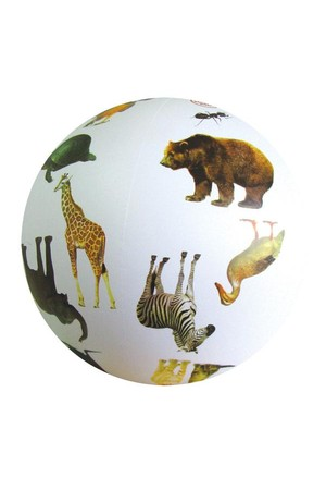 Animal Ball – Phase 1 (Letters and Sounds)