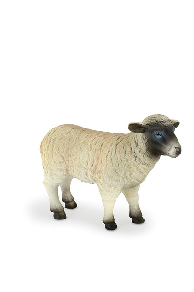 Black Faced Sheep - Ewe (Medium)