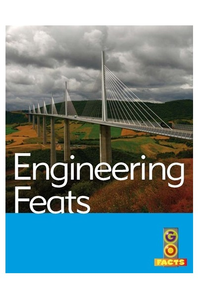 Go Facts - Built Environments: Engineering Feats