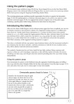 Targeting-Handwriting-WA-Teacher-Resource-Book-Pre-Primary_sample-page7